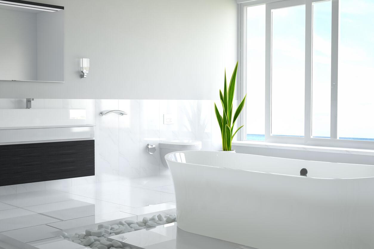 Why Your Bathtub Has Got to Go!